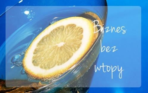 biznes_bez_wtopy1